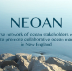 Go to the profile of NEOAN
