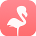 Go to the profile of Flamingo Blog