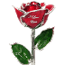 Go to the profile of Love is a Rose