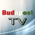 Go to the profile of Budapest TV