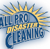 Go to the profile of All Pro Disaster Cleaning