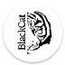 Go to the profile of Blackcat Blockchain Investments
