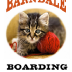 Go to the profile of Barndale Boarding Cattery