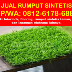 Go to the profile of HP/WA: 0812–6178–6880 (Tsel), Jual Rumput Sintetis