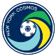 Go to the profile of New York Cosmos