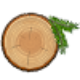 Go to the profile of Pine Stem