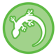 Go to the profile of Gecko