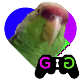 Go to the profile of Based Parrot