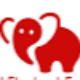 Go to the profile of Red Elephant Foundation