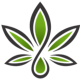 Go to the profile of CBD Health and Wealth