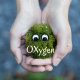 Go to the profile of OXygen