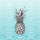 Go to the profile of SEA Pineapple