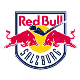 Go to the profile of Red Bull Ice Hockey Academy