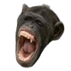 Go to the profile of Push Button Chimp