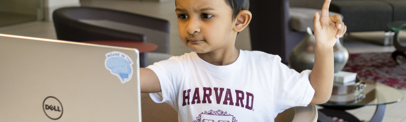 A child wearing a Harvard shirt while confusingly looking at a laptop and wondering why he didn't earn big bucks on Medium.co