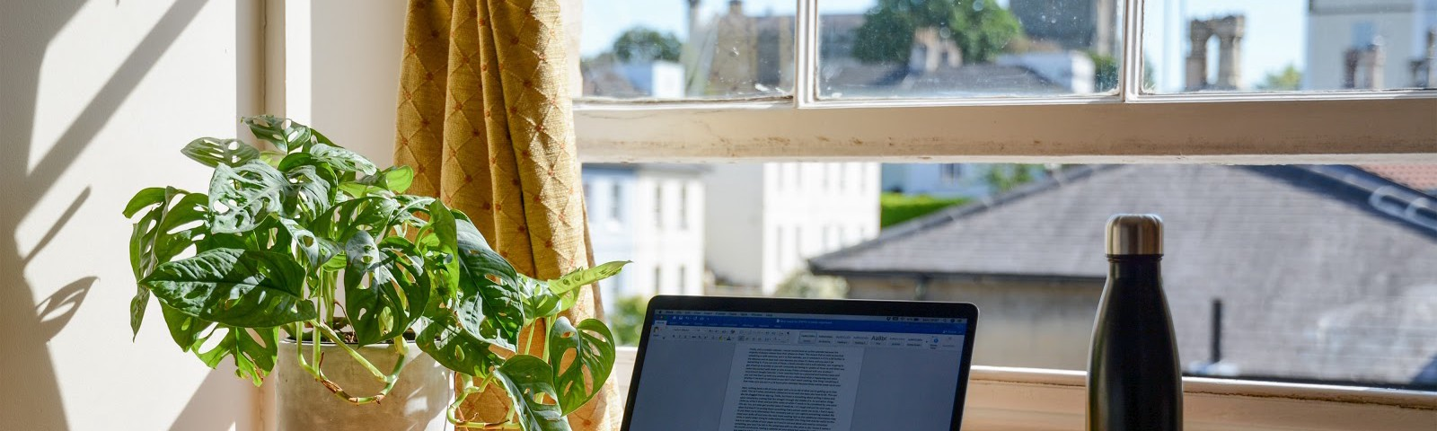 Open Window workspace on a sunny day