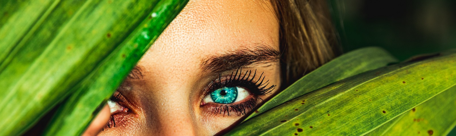 Brown-haired, green-eyed woman watching from behind a green-leafed bush, with only her eyes and eyebrows barely visible.