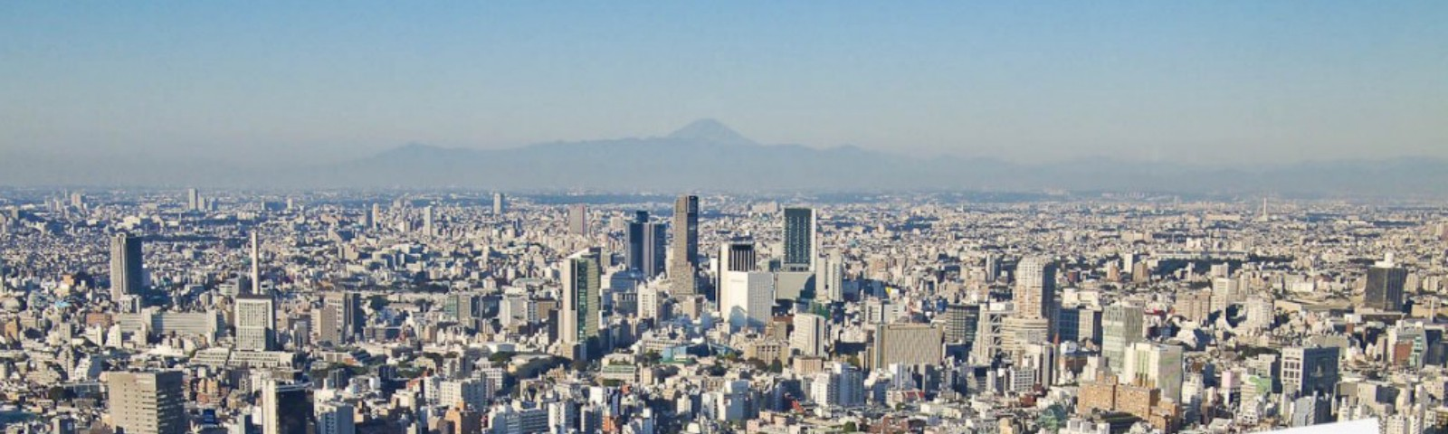 Looking out into Tokyo, with Mount Fuji in the background