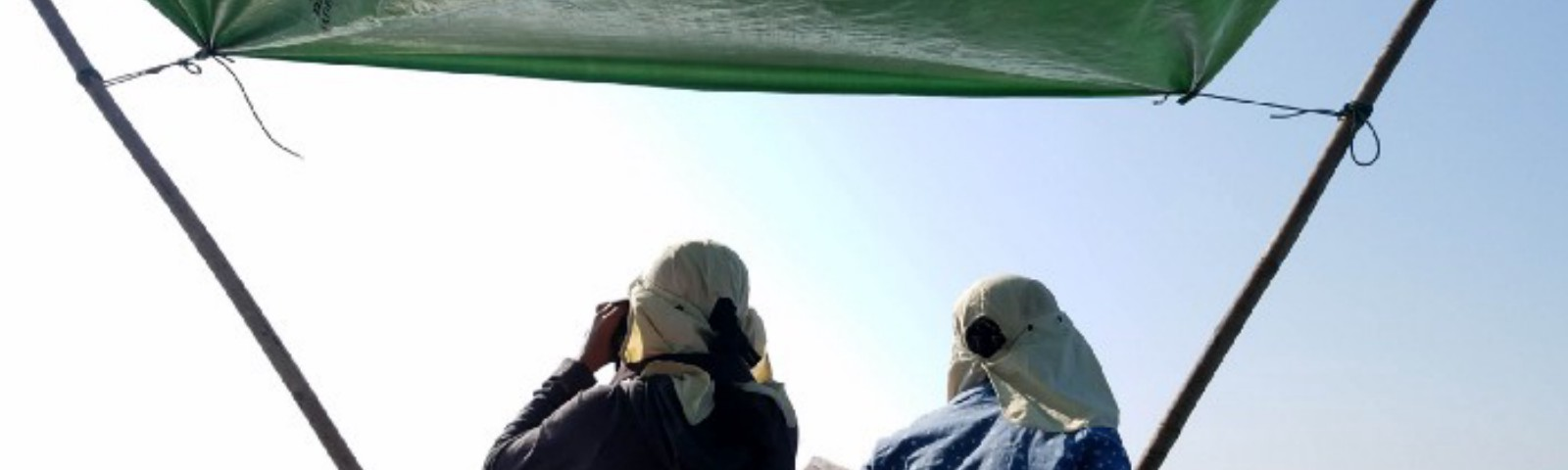 Two young researchers holding binoculars and sitting in the bow of a boat, scanning the sea for dolphins and porpoises