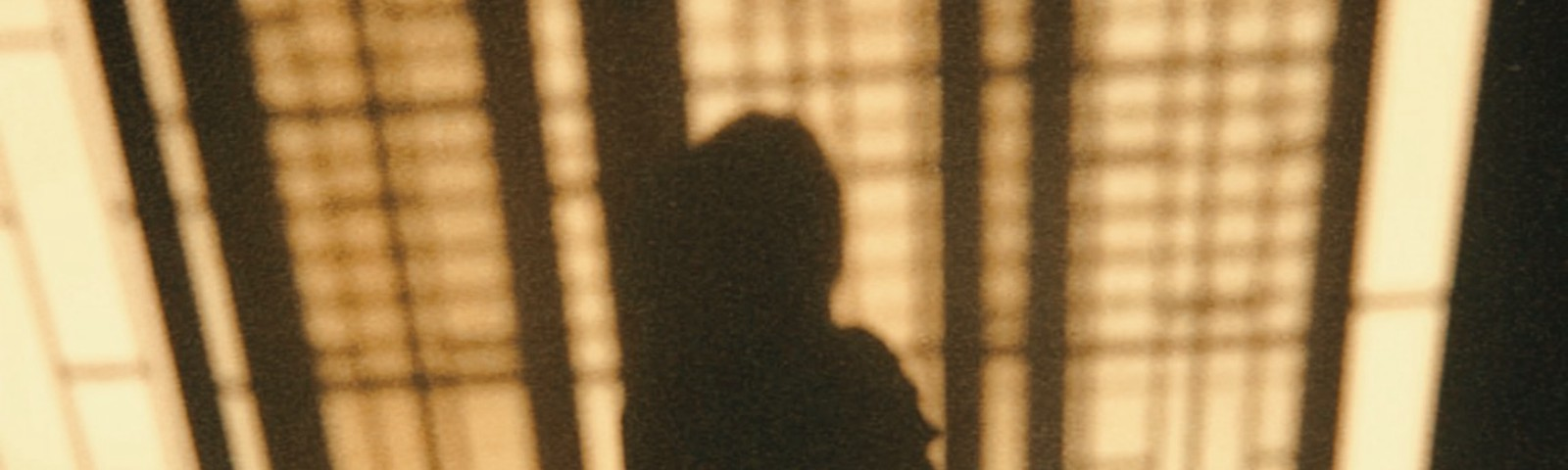 Shadows of a girl at a window.