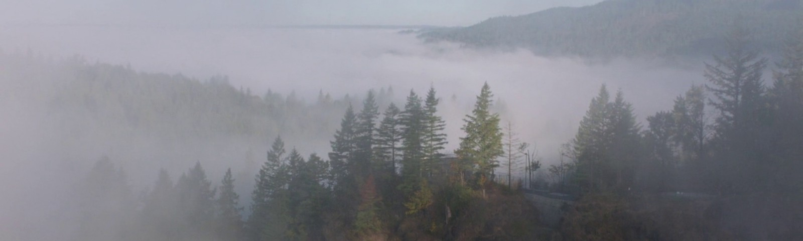 A foggy shot of the mountains and forests outside the fictional town of Twin Peaks.