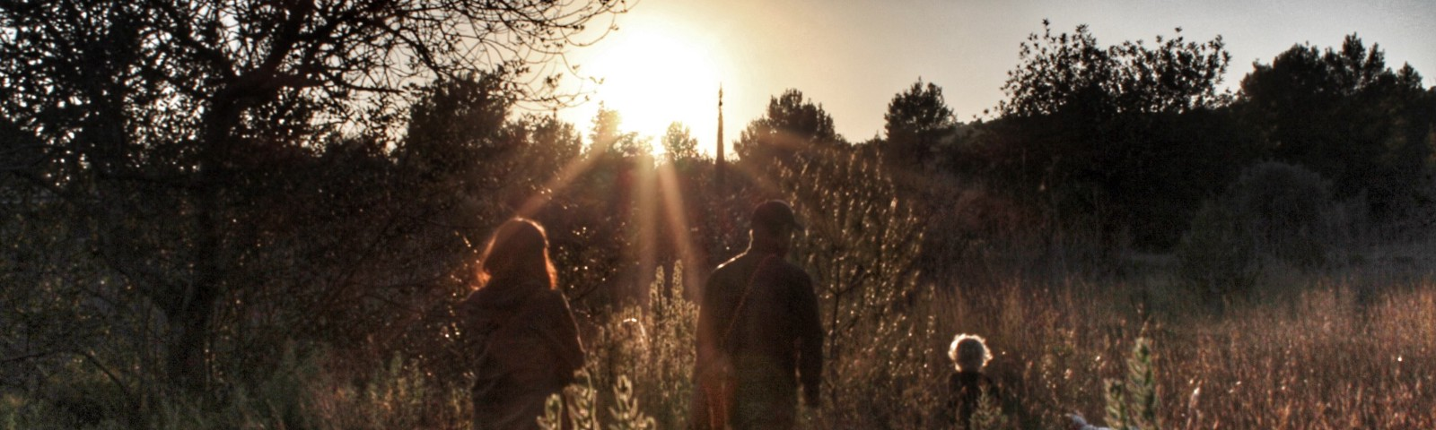 The silhoutte of a family walking through tall grass at sunset.