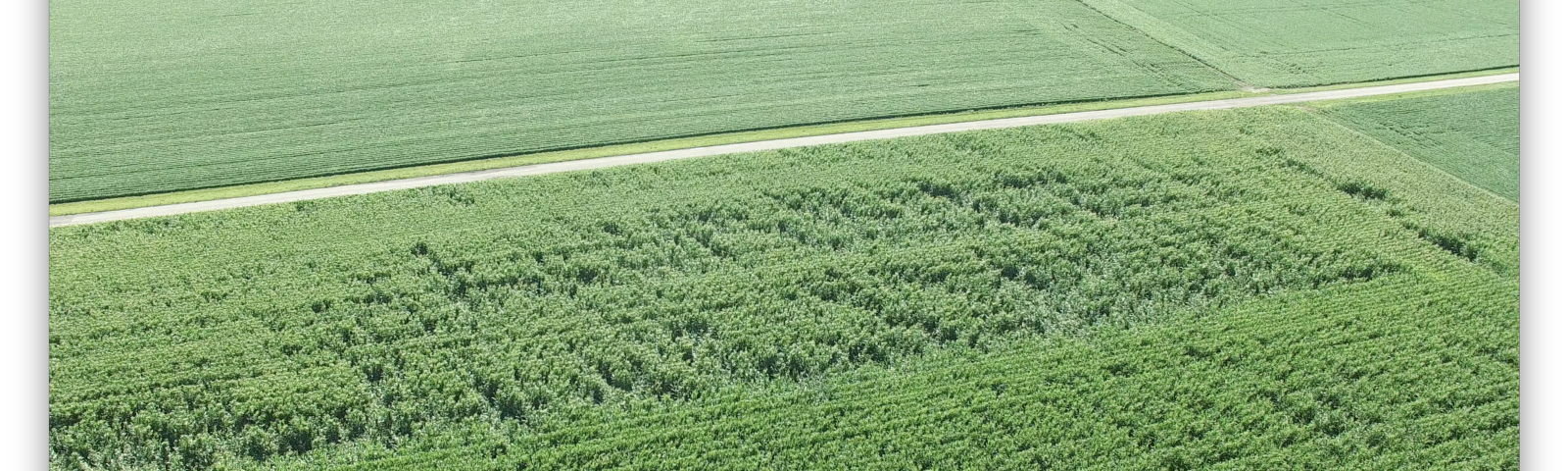 Insurance Dronedeploy S Blog