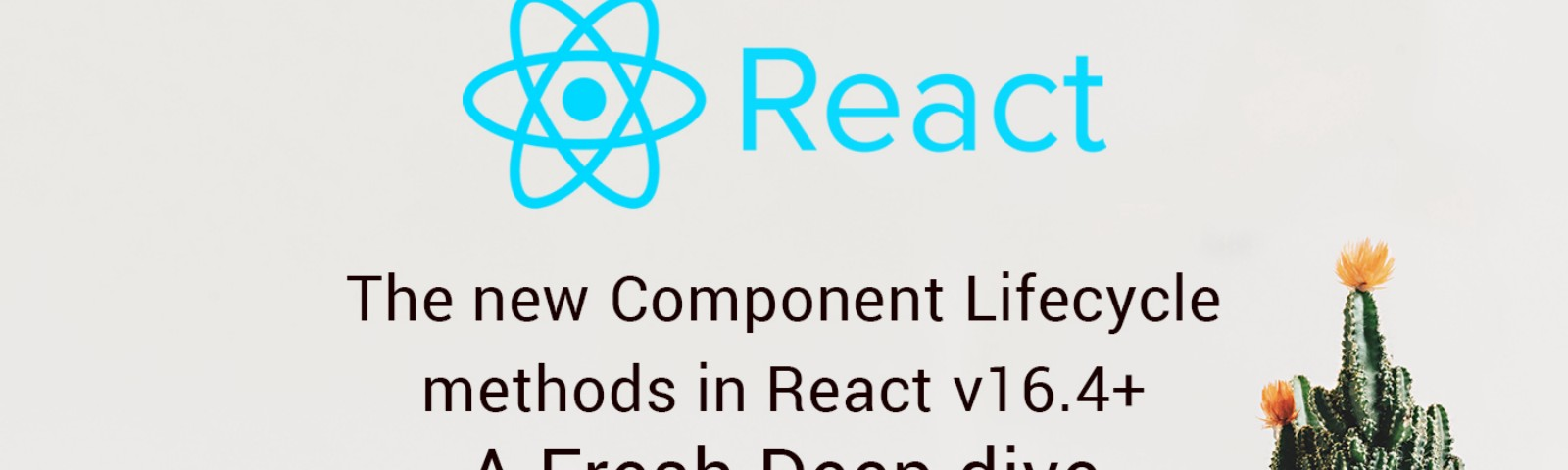 React Component Lifecycle Methods From V16 3 With Example Manual Guide