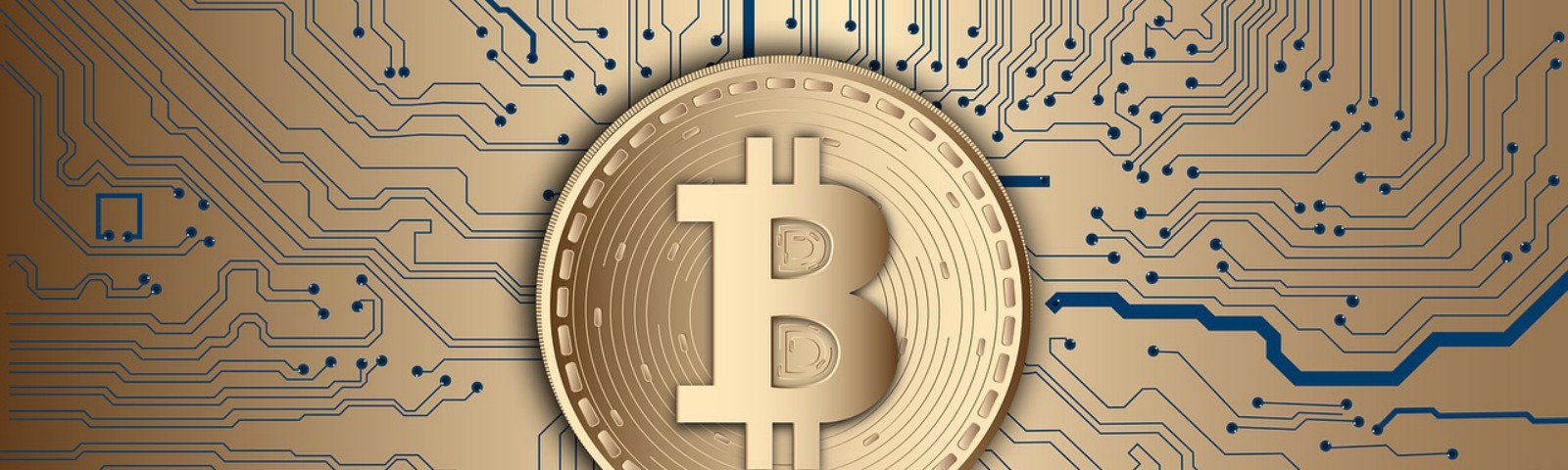 Bitcoin, the first cryptocurrency