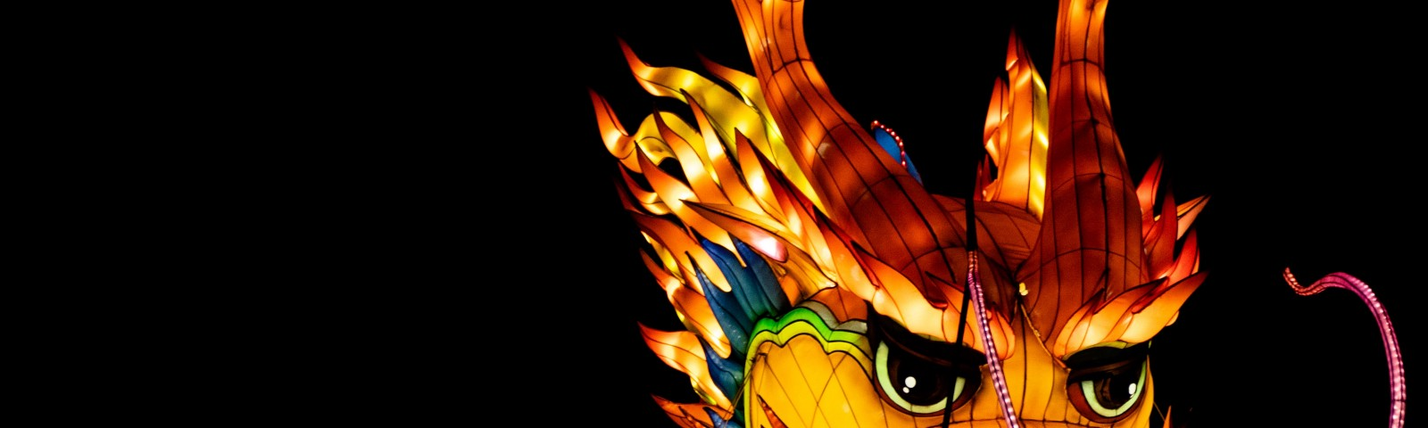 paper dragon all lit up in a night dragon festival parade