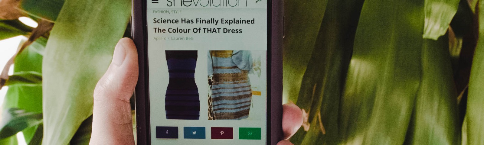 """8707a9c078d0 """"Is the dress blue and black, or white and gold?"""""""