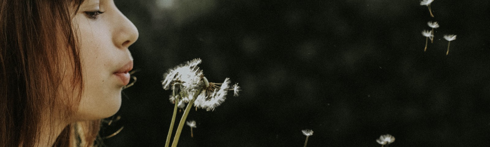 Woman blowing the white seeds off a dandelion