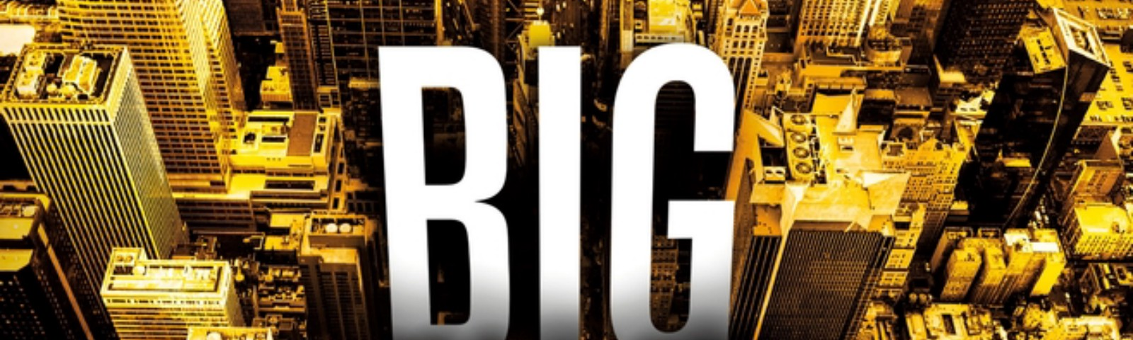 Cover of the book Big Business