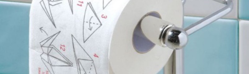 Origami-toilet-paper-makes-you-more-brainy-in-the-toilet
