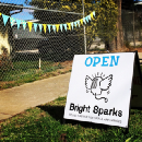 Lessons from Bright Sparks