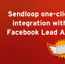Leading the Way with the Facebook Lead Ads