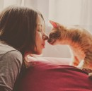 Your Cat Is Not An Asshole; Actually Likes You