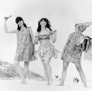 This wild paper clothing trend of the 1960s was the early version of fast fashion