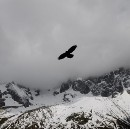 The Mountain and the Eagle
