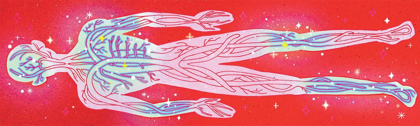 An illustration of veins inside a transparent human body on a red background.