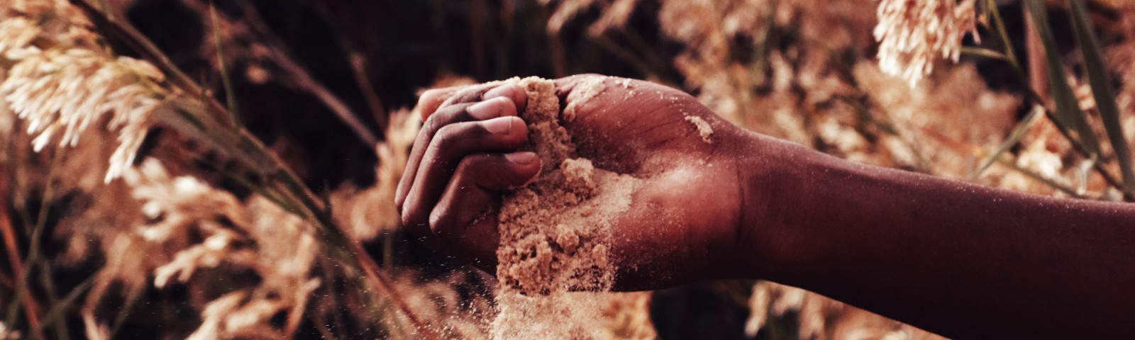 Dry dirt (or sand) falls from a clenched hand.