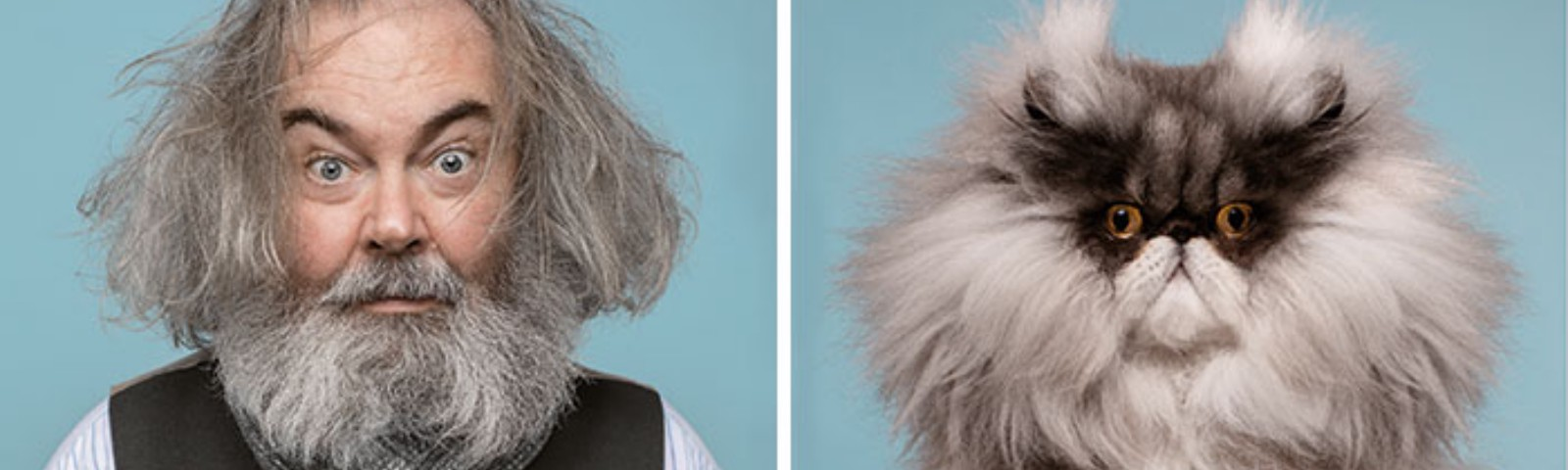 On the left, an older gentleman with unkempt hair and a gray scarf; on right, a gray and black cat with a similar expression