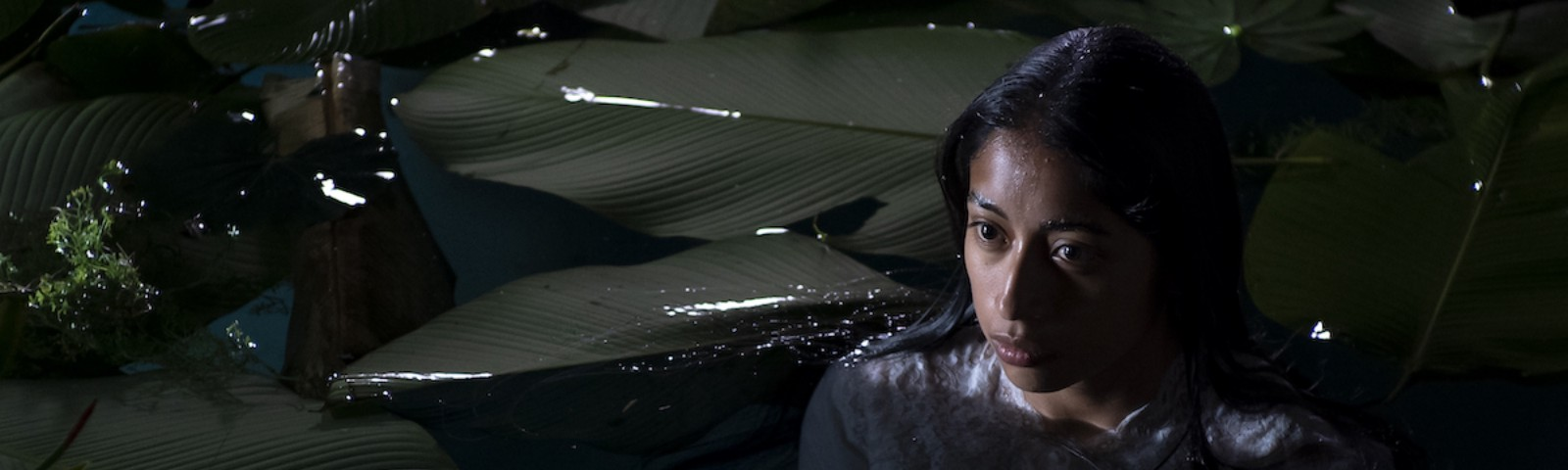 The character Alma, up to her neck in water with huge lily pads on it, at night.