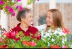 Focus on Family Caregivers