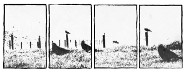 Sequential Images
