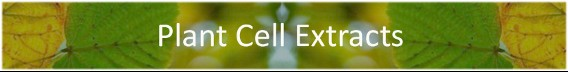Plant Cell Extracts