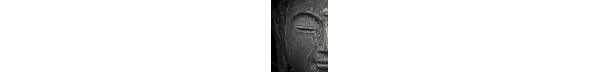 Discovering Buddhism