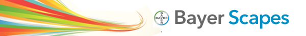 Bayer Scapes