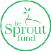 What We Learned: The Sprout Fund & Digital Badges