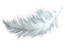 Feather Laundry